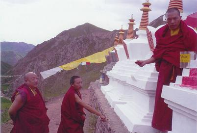 Rinpoche's projects